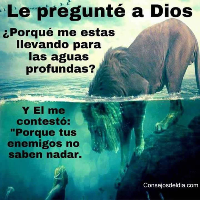http://www.alos80.com/wp-content/uploads/2016/12/aguasprofundas-700x700.jpg