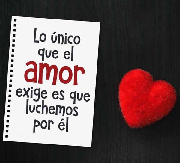 Frases Para Luchar Por Un Amor Alos80com